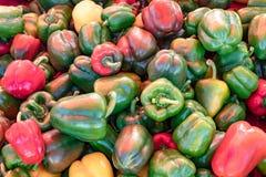 Gemüsepaprika, Grün und Rot stockfotos