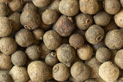 Gemüsepaprikaerbsen Lizenzfreie Stockbilder