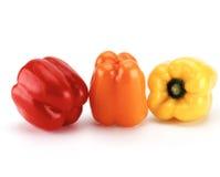 Gemüsepaprikas Lizenzfreies Stockfoto