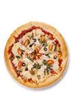 Gemüsepizza Stockbilder