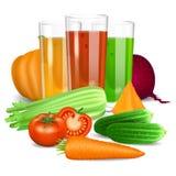 Gemüsesäfte Gurke, Tomate, Karotte, Kürbis, rote Rübe Stockbild