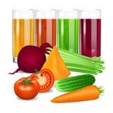 Gemüsesäfte Gurke, Tomate, Karotte, Kürbis, rote Rübe Stockbilder