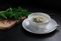 Gemüsesahnesuppe, schwarzer Hintergrund, neues Petersilie ukop Lizenzfreies Stockfoto