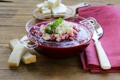 Gemüsesahnesuppe von Rote-Bete-Wurzeln mit Weichkäse Stockfotos