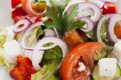 Gemüsesalat mit brynza Stockbild
