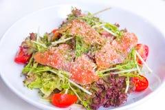 Gemüsesalat mit geräuchertem Lachs Lizenzfreies Stockfoto