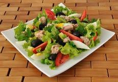 Gemüsesalat mit Thunfisch und Ei stockbild