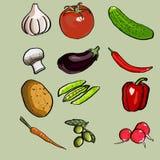 Gemüsesatz Lizenzfreies Stockbild