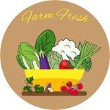 Gemüseschüssel Flaches Design Hand gezeichnete vektorabbildung Stockbilder