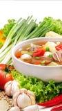 Gemüsesuppe mit Fleisch Lizenzfreies Stockbild