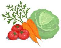 Gemüsezusammensetzung lizenzfreie abbildung
