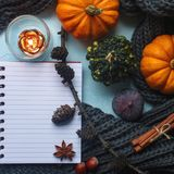 Gemütlicher Herbsthintergrund, Notizbuch, dekorative Kürbise, getrocknete Orangen, Kerze, Nüsse, Zimt und Herbstlaub Lizenzfreies Stockbild