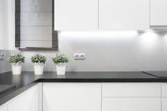 Gemütlicher Kücheninnenraum Lizenzfreies Stockbild
