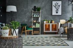 Gemütlicher Raum mit Anlagen Lizenzfreie Stockbilder
