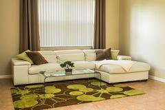 Gemütliches Wohnzimmer in den Olivgrünfarben Stockbilder