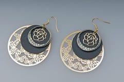 Gem earrings Stock Images