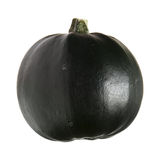 Gem gourd side view, isolated Stock Image