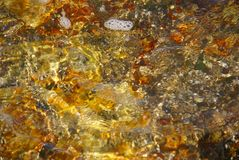 Gem-like colors in tidepool. Granite rocks, kelp and algae a low tide;SeawallMount Desert Island, Acadia National park, Maine, New England Stock Images