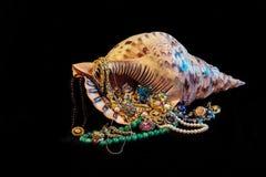 Gem shell. Sea shell full of gem Stock Photos
