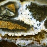 Gem stone agate Royalty Free Stock Image