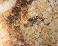 Gem stone onyx close-up, natural cracked texture Royalty Free Stock Image