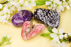 Gem Stones. Semi precious stones and apple blossoms Royalty Free Stock Photo