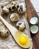 Gema de ovos de codorniz em uma colher de madeira e em ovos de codorniz Foto de Stock Royalty Free