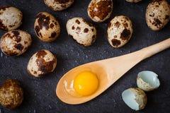 Gema de ovos de codorniz em uma colher de madeira e em ovos de codorniz Imagens de Stock Royalty Free