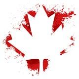 Gemaakt de esdoornblad van Canada Stock Foto's