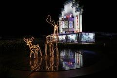 Gemaakt van lichte doosmuur in het park bij nacht Stock Afbeelding