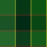 Gemakkelijk Groen Geruit de Plaid Vectorpatroon van Editable Royalty-vrije Stock Foto