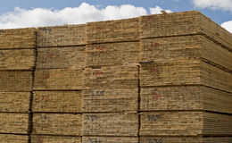 Gemalen bouwtimmerhout Royalty-vrije Stock Fotografie