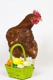 Gemalte Eier Stockbilder