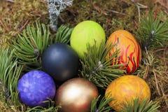 Gemalte Eier verziert im Moos Stockbilder