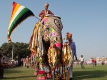 Gemalte Elefanten auf Parade Stockbilder
