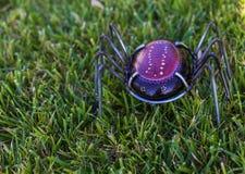 Gemalte Felsenmetallbeine hergestellt, um wie eine Spinne auszusehen Stockfotos