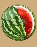 Gemalte grüne gestreifte Wassermelone der Runde mit ungleich gebissen weg vom Teil stock abbildung