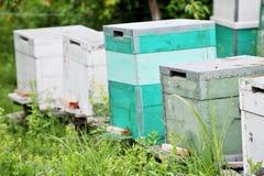 Gemalte hölzerne Bienenstöcke Stockfotografie