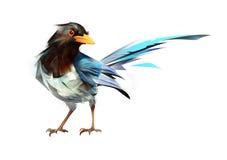 Gemalte helle Vogelelster, die auf einem weißen Hintergrund sitzt Vektor Abbildung
