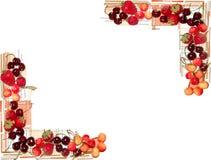 Gemalte Mischung trägt der Rahmen Früchte, der auf weißem Hintergrund lokalisiert wird Lizenzfreie Stockbilder
