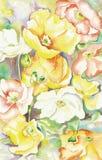 Gemalte orientalische Mohnblumen Stockfoto