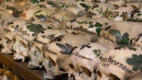 Gemalte Schädel in einem Knochen-Haus Stockfotografie