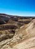 Gemalte Wüste Lizenzfreie Stockfotografie