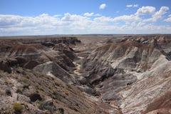 Gemalte Wüsten-Ansicht Stockfoto