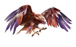 Gemalter fliegender Adler auf einem weißen Hintergrund lizenzfreie abbildung