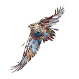 Gemalter heller angreifender Vogelfalke Stockfotos