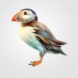 Gemalter heller lokalisierter Vogel Papageientaucher Stock Abbildung