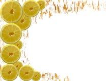Gemalter limons Rahmen lokalisiert auf weißem Hintergrund Stockfotografie