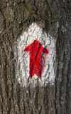 Gemaltes rotes touristisches Zeichen, Pfeil, für Navigation im Wald, auf der Oberfläche der Baumrinde wandernd Lizenzfreies Stockbild
