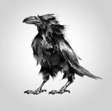Gemaltes Vogelkrähensitzen Stock Abbildung